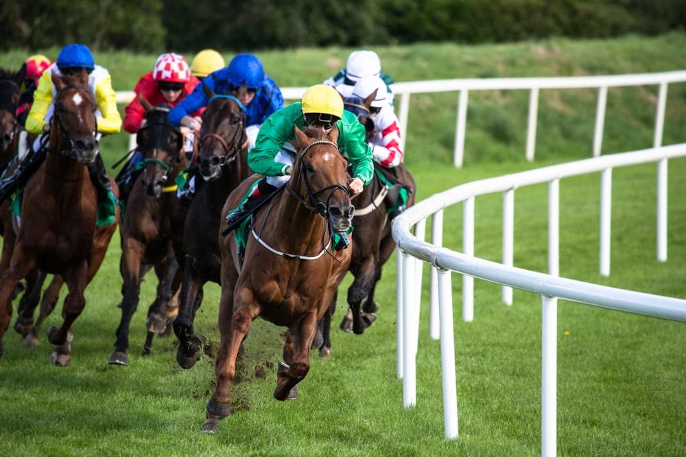 Jockeys riding horses in a race. Toghill House Farm, Bath, somerset, Bath Racecourse.