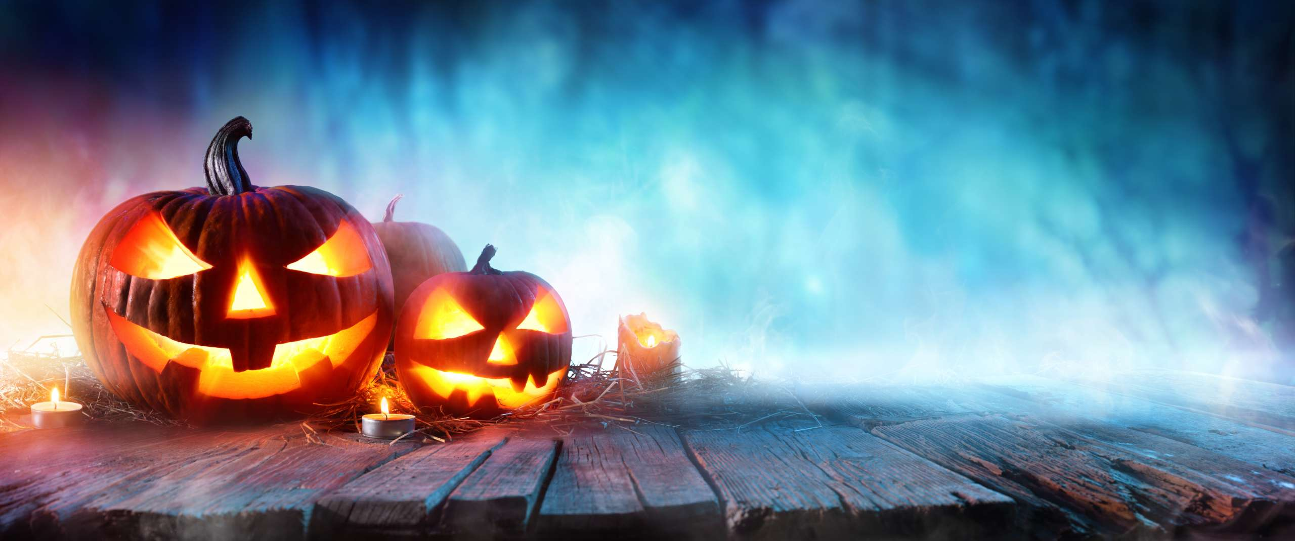 Halloween,Pumpkins,On,Wood,In,A,Spooky,Forest,At,Night
